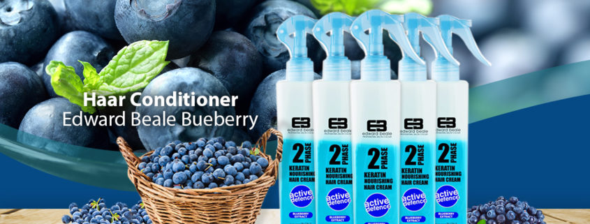Haar Conditioner Blueberry