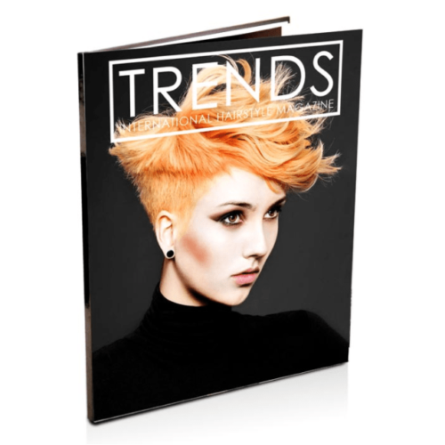 Trends International Hairstyle Magazine